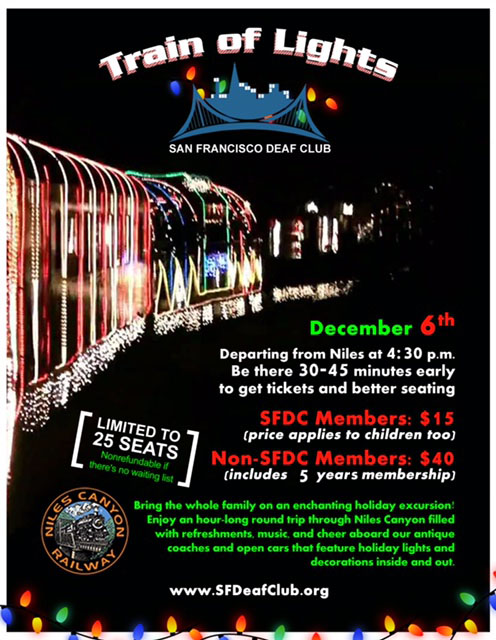 SFDC Train of Lights - 2015